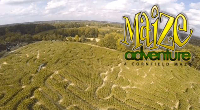 maize adventure.png