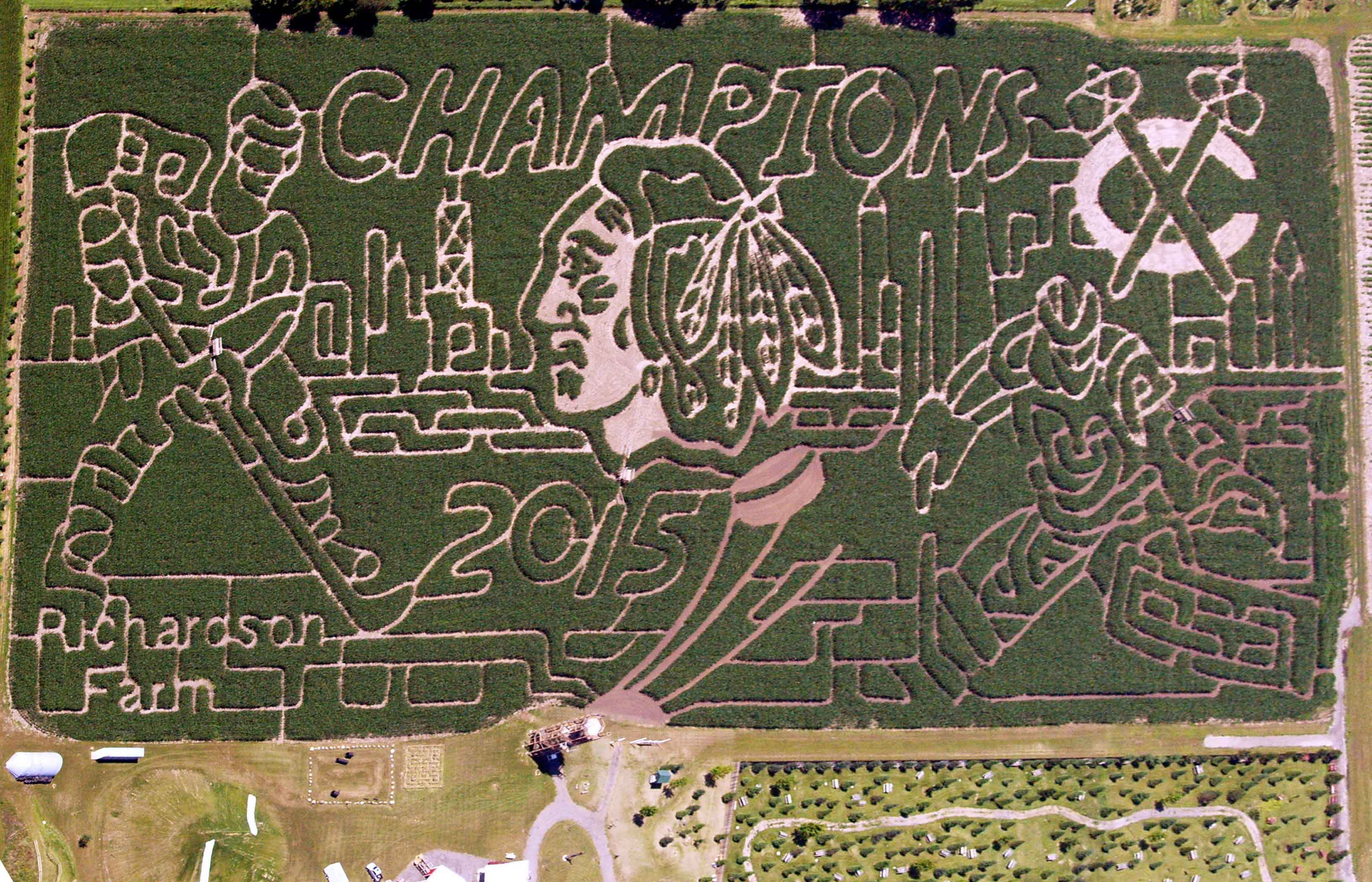 Chicago Blackhawks maze